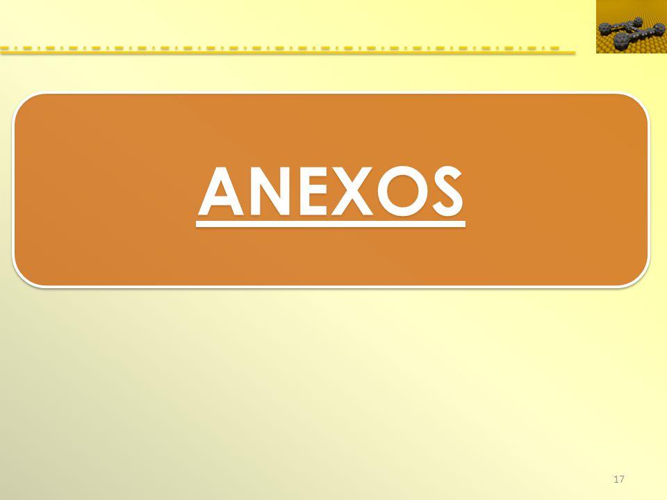 17 ANEXOS
