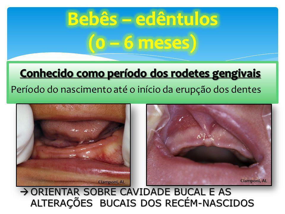 Corrêa MSNP Após amamentação, deve ser feita a limpeza de leite estagnado nas comissuras labiais e na cavidade bucal (Após 3º Mês)