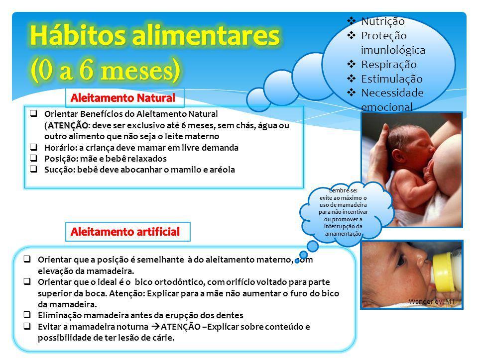 Nutrição Proteção imunlológica Respiração Estimulação Necessidade emocional Orientar que a posição é semelhante à do aleitamento materno, com elevação