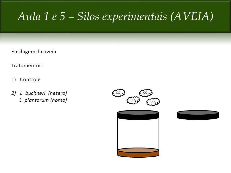 Ensilagem da aveia Tratamentos: 1)Controle 2)L. buchneri (hetero) L. plantarum (homo) CO 2