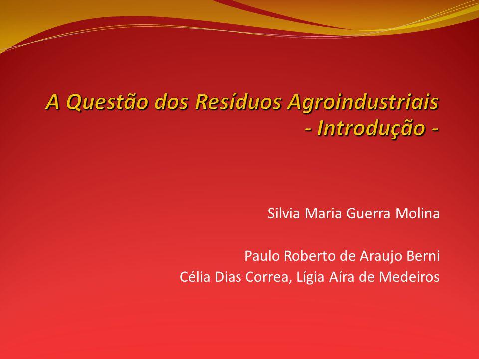 Silvia Maria Guerra Molina Paulo Roberto de Araujo Berni Célia Dias Correa, Lígia Aíra de Medeiros