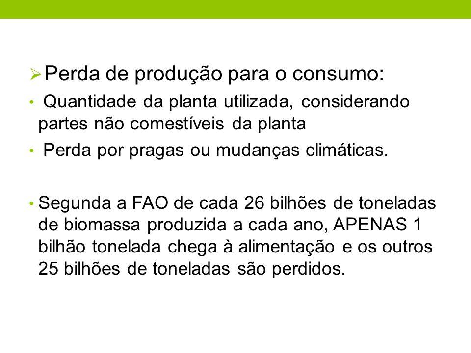Perda de produção para o consumo: Quantidade da planta utilizada, considerando partes não comestíveis da planta Perda por pragas ou mudanças climática