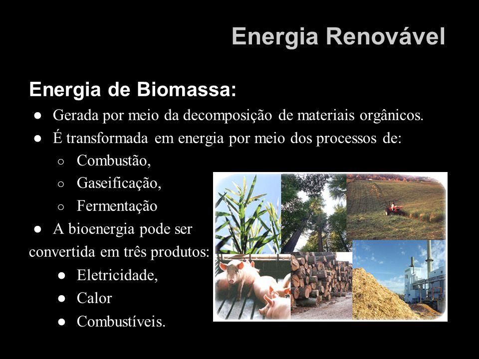 Energia de Biomassa: Gerada por meio da decomposição de materiais orgânicos. É transformada em energia por meio dos processos de: Combustão, Gaseifica