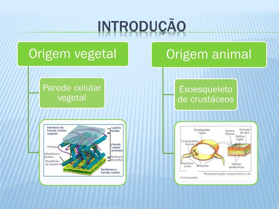 Origem vegetal Parede celular vegetal Origem animal Exoesqueleto de crustáceos