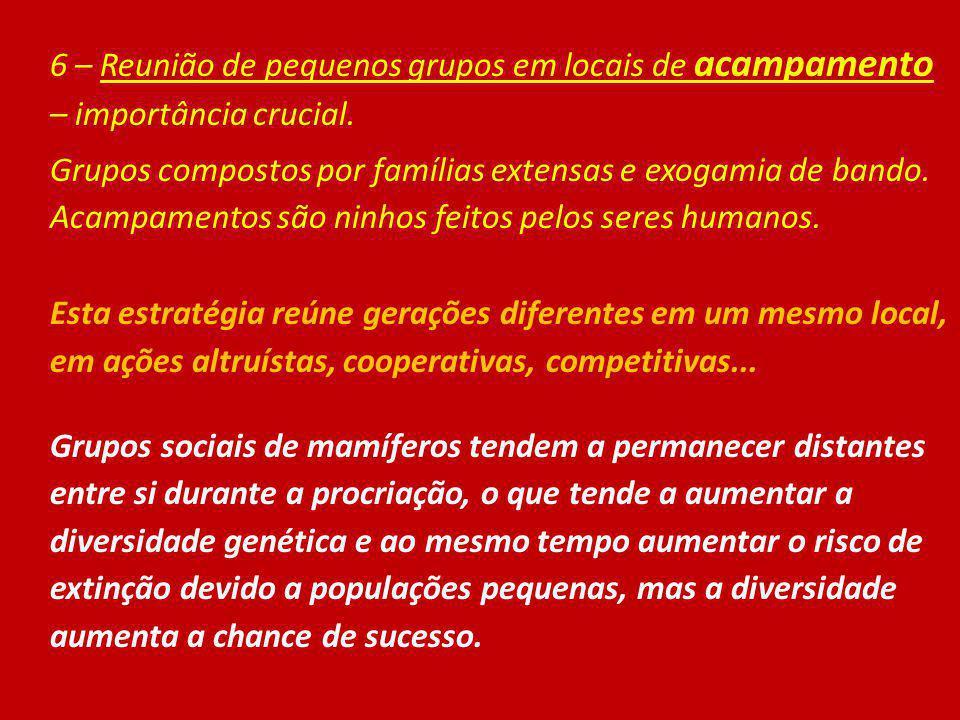 6 – Reunião de pequenos grupos em locais de acampamento – importância crucial. Grupos compostos por famílias extensas e exogamia de bando. Acampamento