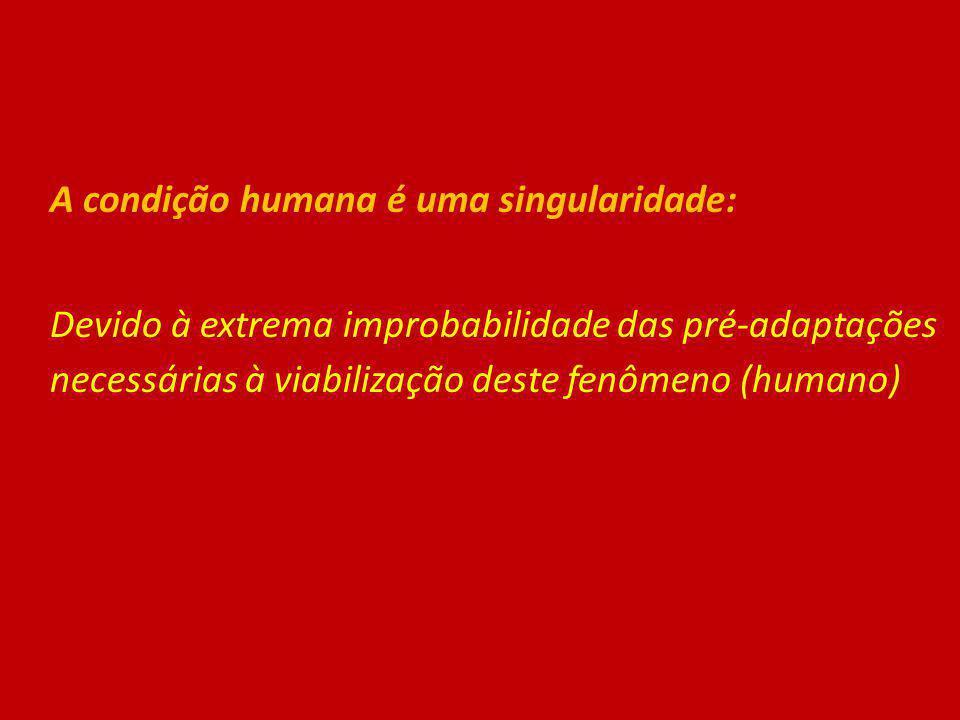 A condição humana é uma singularidade: Devido à extrema improbabilidade das pré-adaptações necessárias à viabilização deste fenômeno (humano)