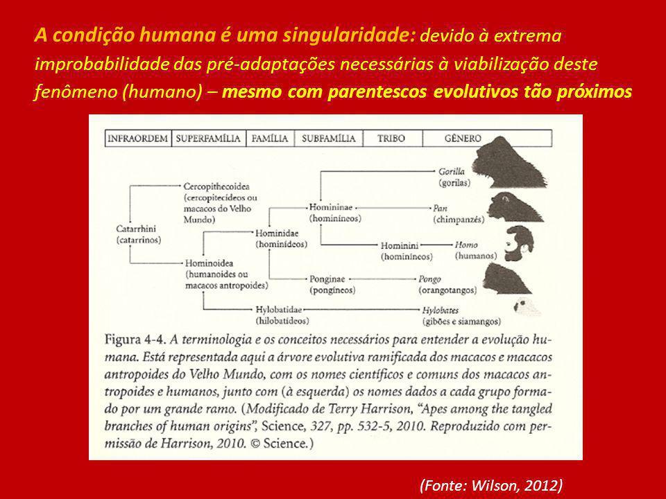A condição humana é uma singularidade: devido à extrema improbabilidade das pré-adaptações necessárias à viabilização deste fenômeno (humano) – mesmo