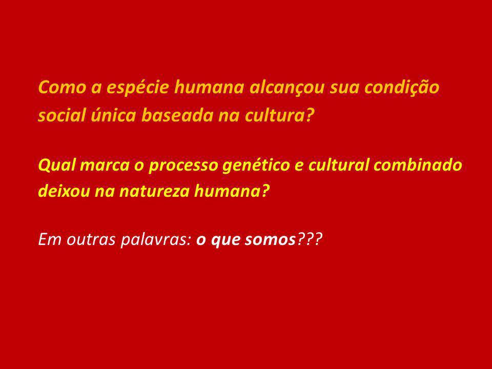 Como a espécie humana alcançou sua condição social única baseada na cultura? Qual marca o processo genético e cultural combinado deixou na natureza hu