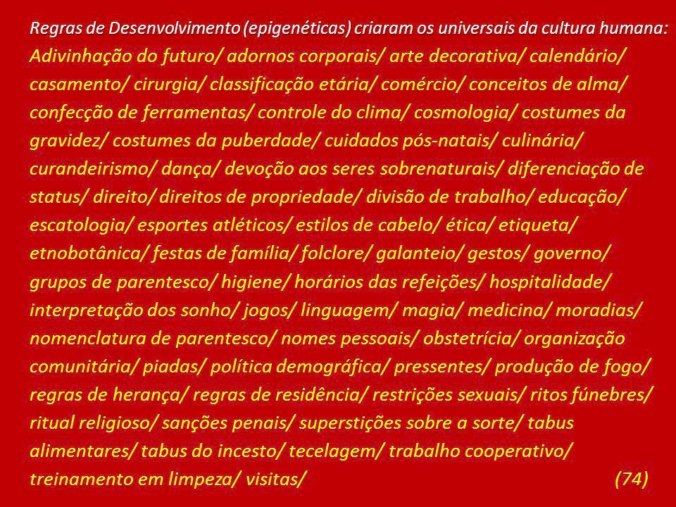 Regras de Desenvolvimento (epigenéticas) criaram os universais da cultura humana: Adivinhação do futuro/ adornos corporais/ arte decorativa/ calendári