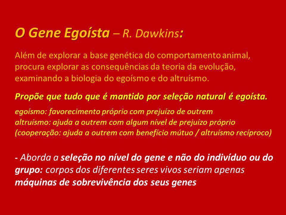 O Gene Egoísta : O Gene Egoísta – R. Dawkins : Além de explorar a base genética do comportamento animal, procura explorar as consequências da teoria d