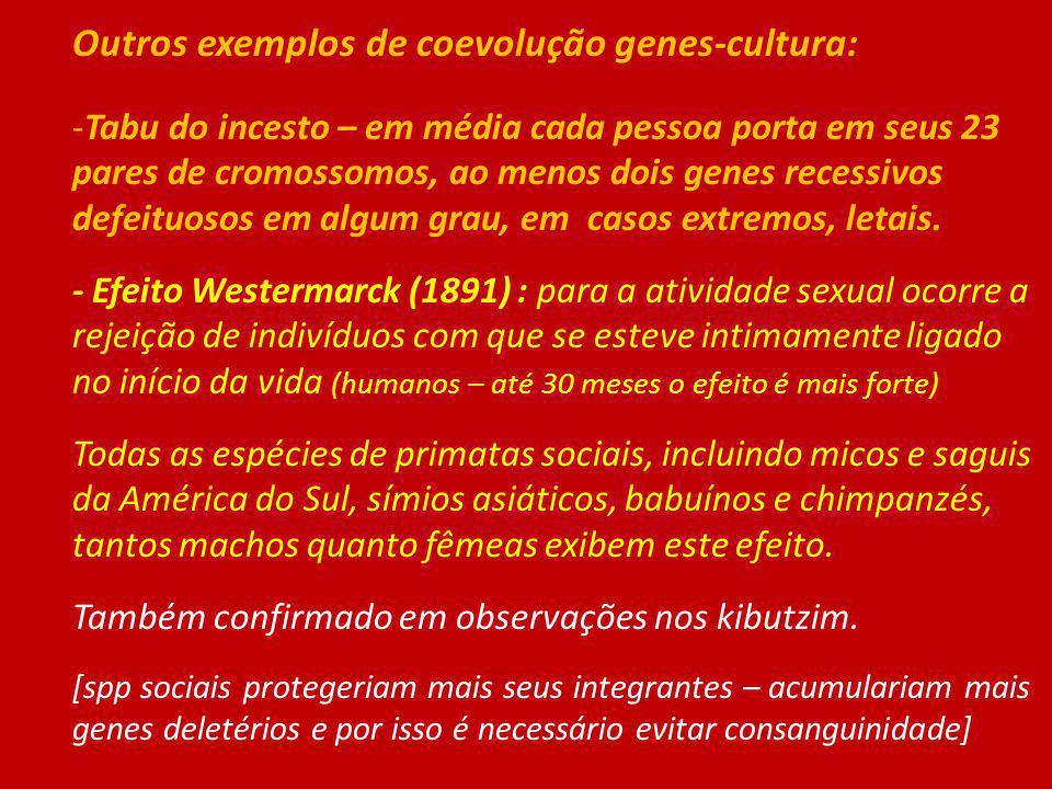 Outros exemplos de coevolução genes-cultura: -Tabu do incesto – em média cada pessoa porta em seus 23 pares de cromossomos, ao menos dois genes recess