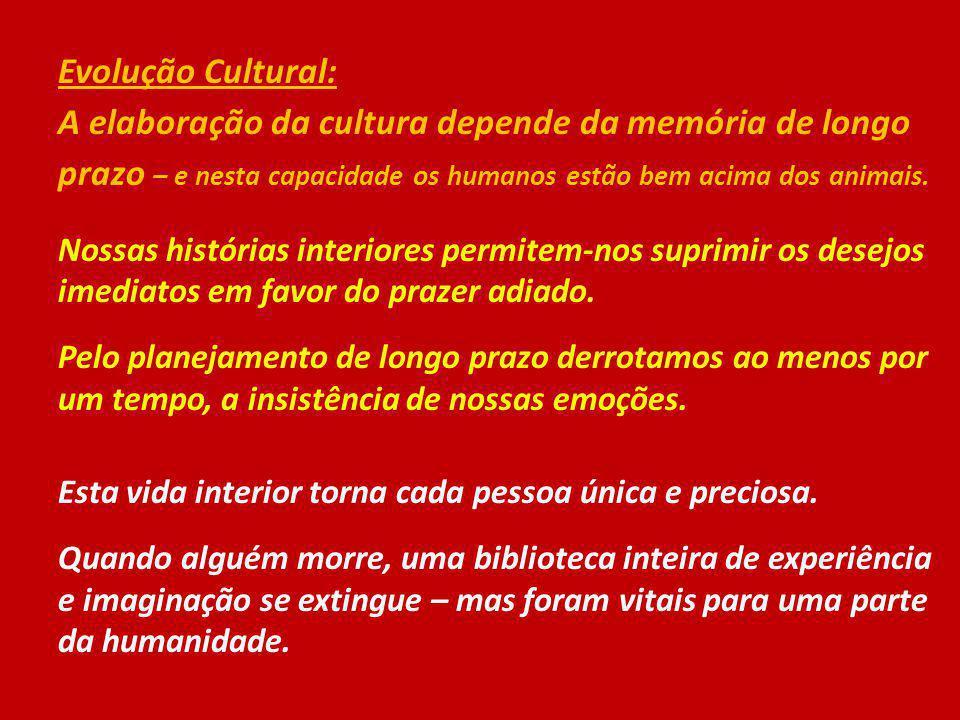 Evolução Cultural: A elaboração da cultura depende da memória de longo prazo – e nesta capacidade os humanos estão bem acima dos animais. Nossas histó