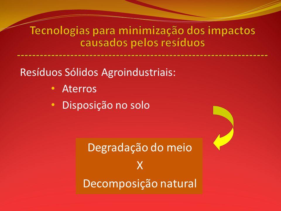 Resíduos Sólidos Agroindustriais: Aterros Disposição no solo Degradação do meio X Decomposição natural
