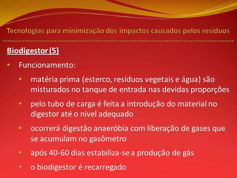 Biodigestor (5) Funcionamento: matéria prima (esterco, resíduos vegetais e água) são misturados no tanque de entrada nas devidas proporções pelo tubo