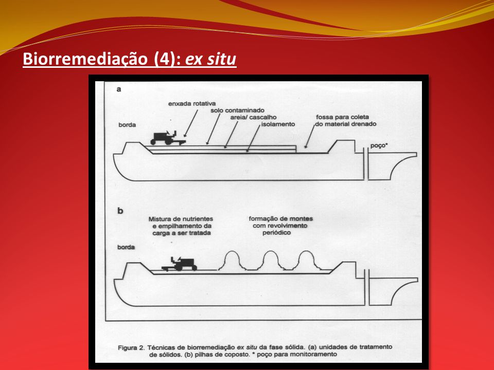 Biorremediação (4): ex situ