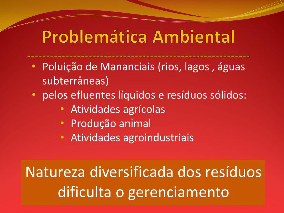 Poluição de Mananciais (rios, lagos, águas subterrâneas) pelos efluentes líquidos e resíduos sólidos: Atividades agrícolas Produção animal Atividades