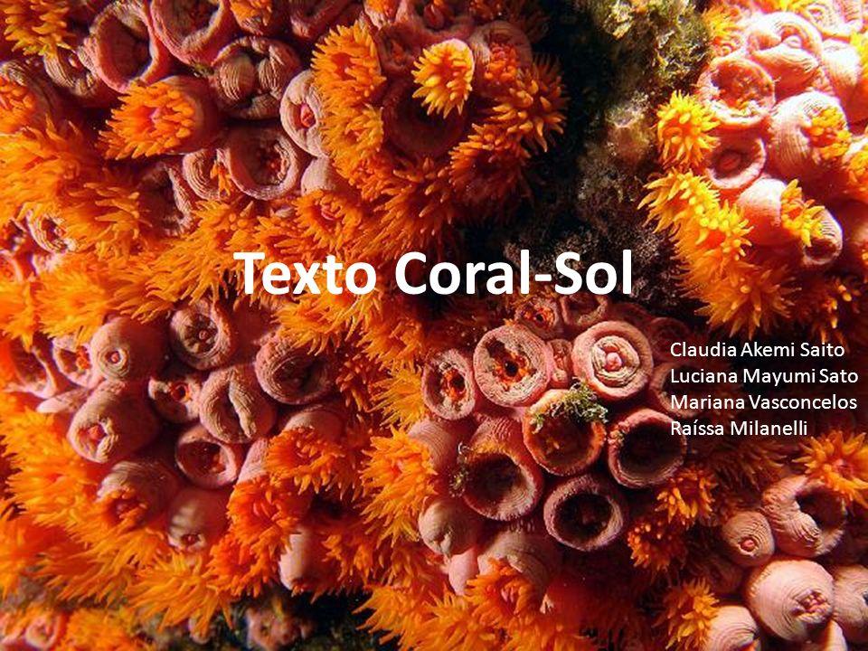 Texto Coral-Sol Claudia Akemi Saito Luciana Mayumi Sato Mariana Vasconcelos Raíssa Milanelli