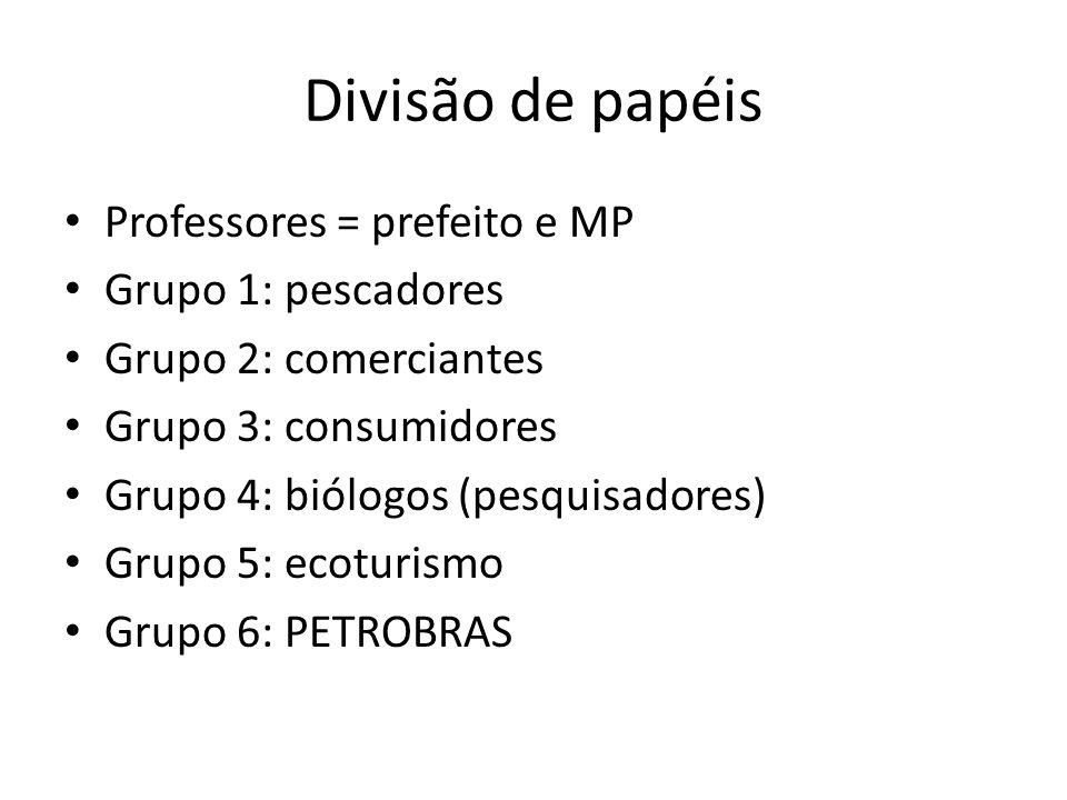 Divisão de papéis Professores = prefeito e MP Grupo 1: pescadores Grupo 2: comerciantes Grupo 3: consumidores Grupo 4: biólogos (pesquisadores) Grupo 5: ecoturismo Grupo 6: PETROBRAS