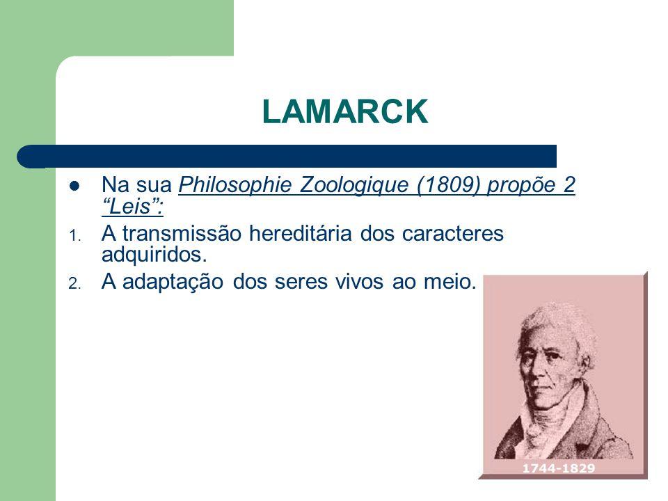 LAMARCK Na sua Philosophie Zoologique (1809) propõe 2 Leis: 1. A transmissão hereditária dos caracteres adquiridos. 2. A adaptação dos seres vivos ao