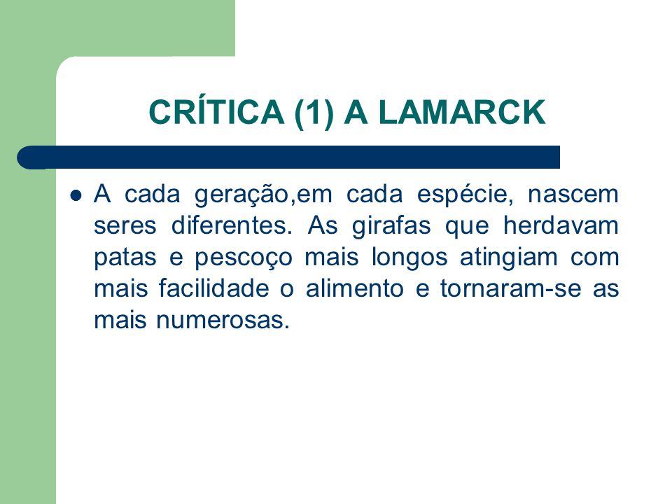 CRÍTICA (1) A LAMARCK A cada geração,em cada espécie, nascem seres diferentes. As girafas que herdavam patas e pescoço mais longos atingiam com mais f