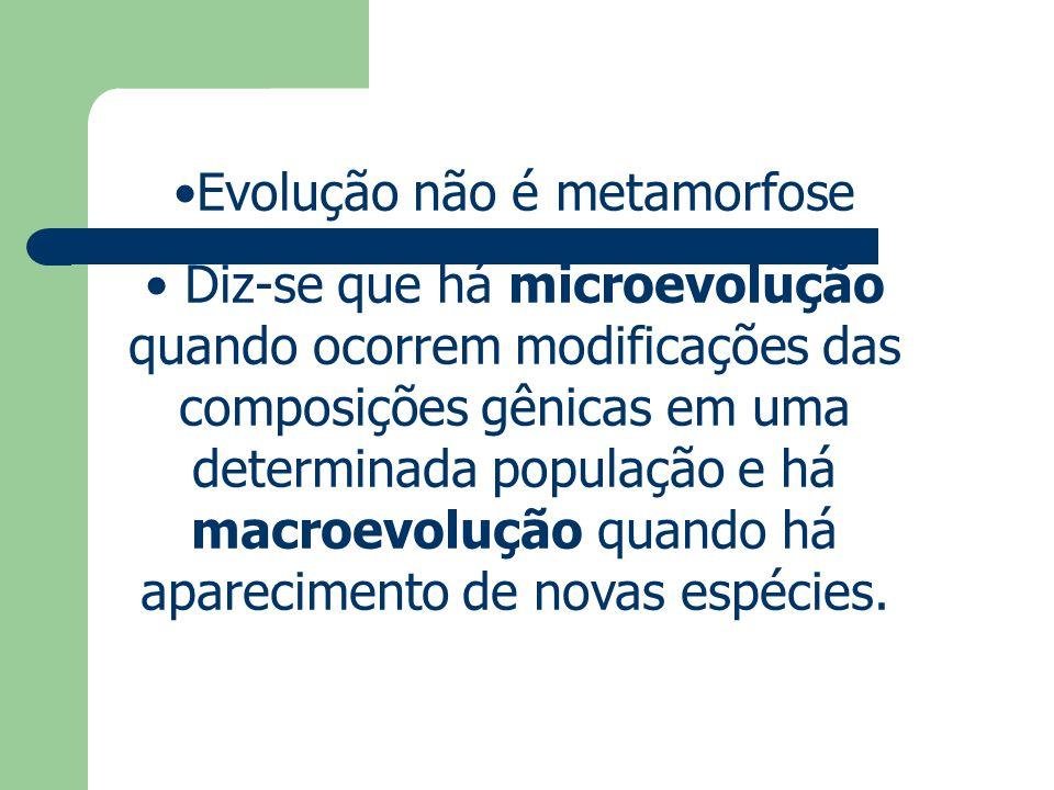 Evolução não é metamorfose Diz-se que há microevolução quando ocorrem modificações das composições gênicas em uma determinada população e há macroevol