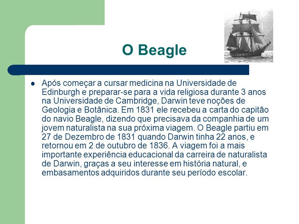 O Beagle Após começar a cursar medicina na Universidade de Edinburgh e preparar-se para a vida religiosa durante 3 anos na Universidade de Cambridge,