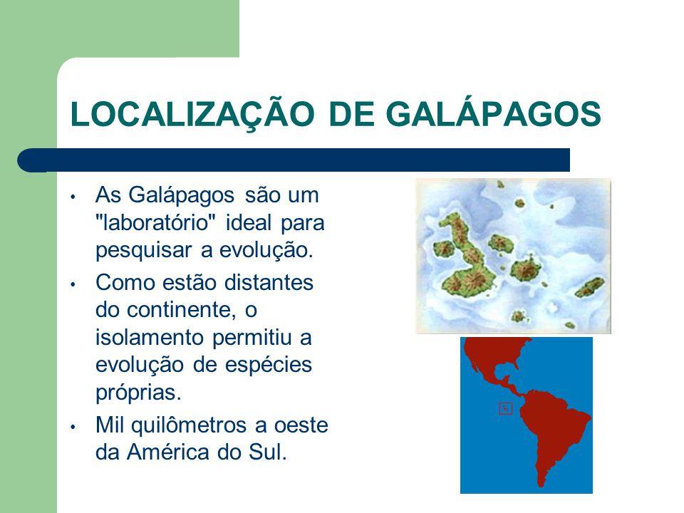 LOCALIZAÇÃO DE GALÁPAGOS As Galápagos são um