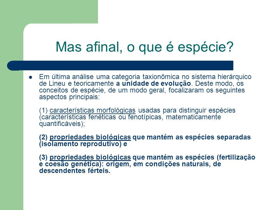LOCALIZAÇÃO DE GALÁPAGOS As Galápagos são um laboratório ideal para pesquisar a evolução.