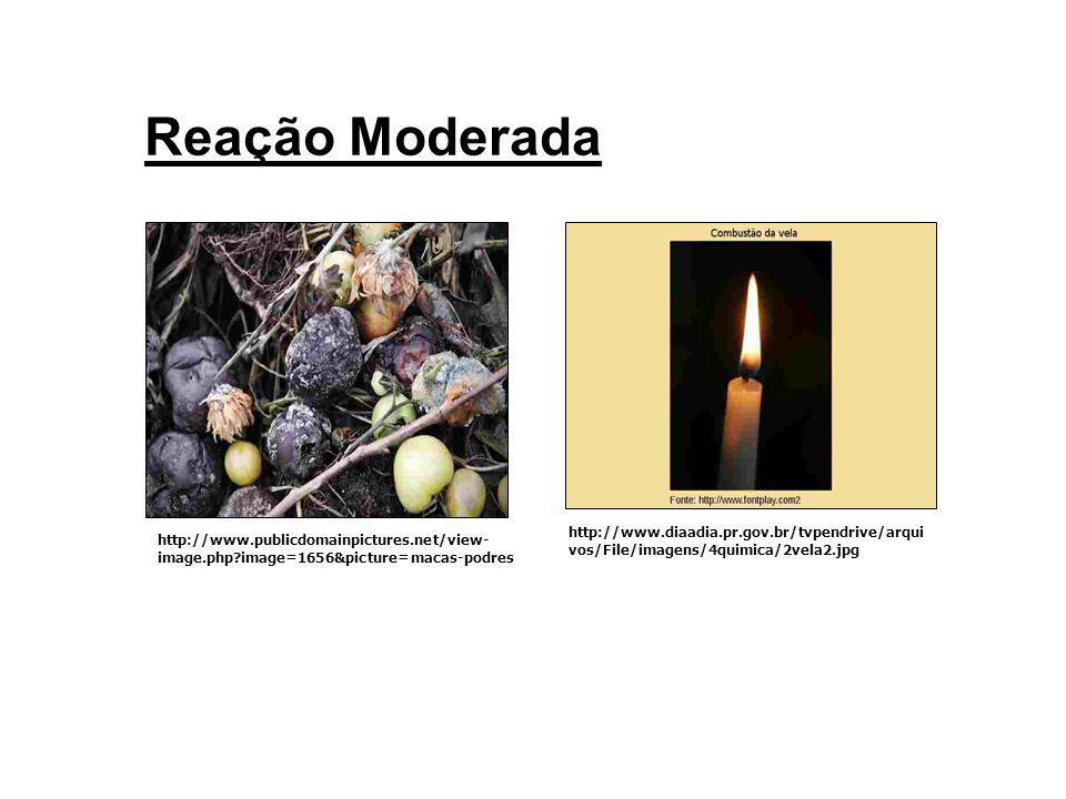 Reação Lenta http://pt.wikipedia.org/wiki/Ferrugem http://pt.wikipedia.org/wiki/Petr%C3%B 3leo#O_petr.C3.B3leo_no_Brasil