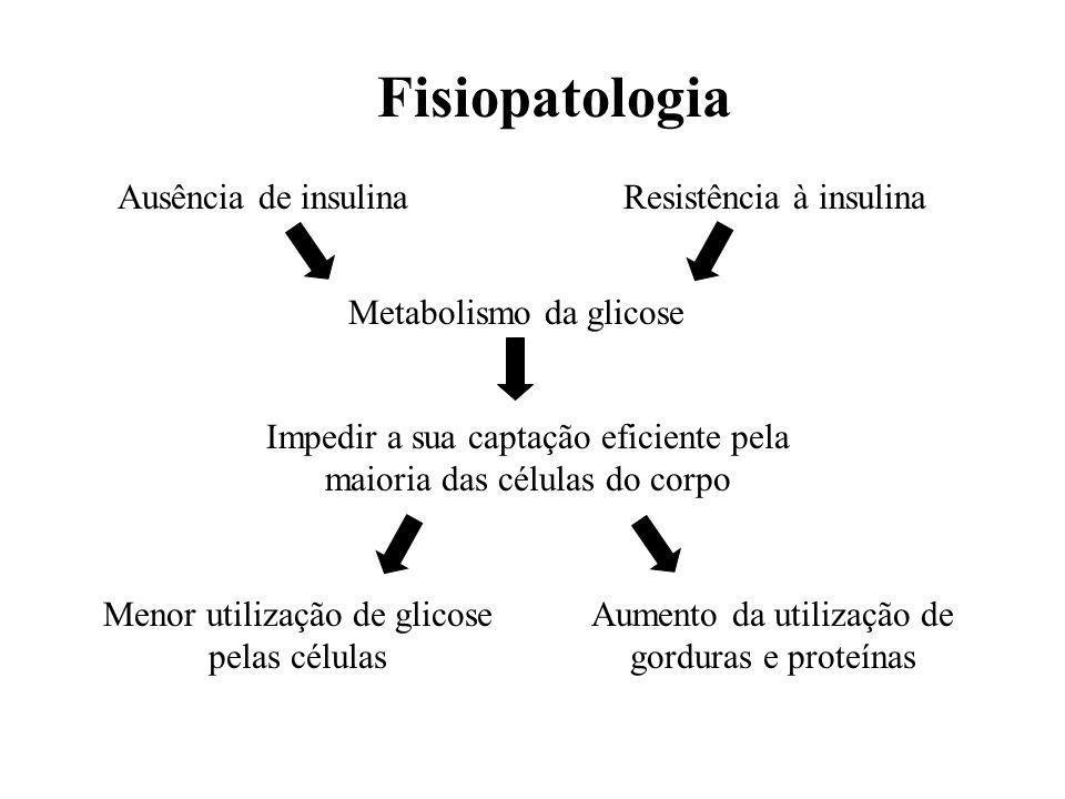 Ausência de insulinaResistência à insulina Metabolismo da glicose Impedir a sua captação eficiente pela maioria das células do corpo Menor utilização de glicose pelas células Aumento da utilização de gorduras e proteínas Fisiopatologia