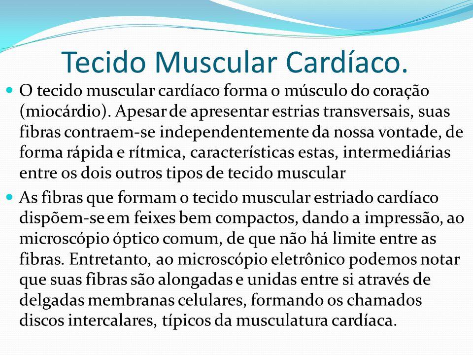 Fotos do Tecido Muscular Cardíaco.