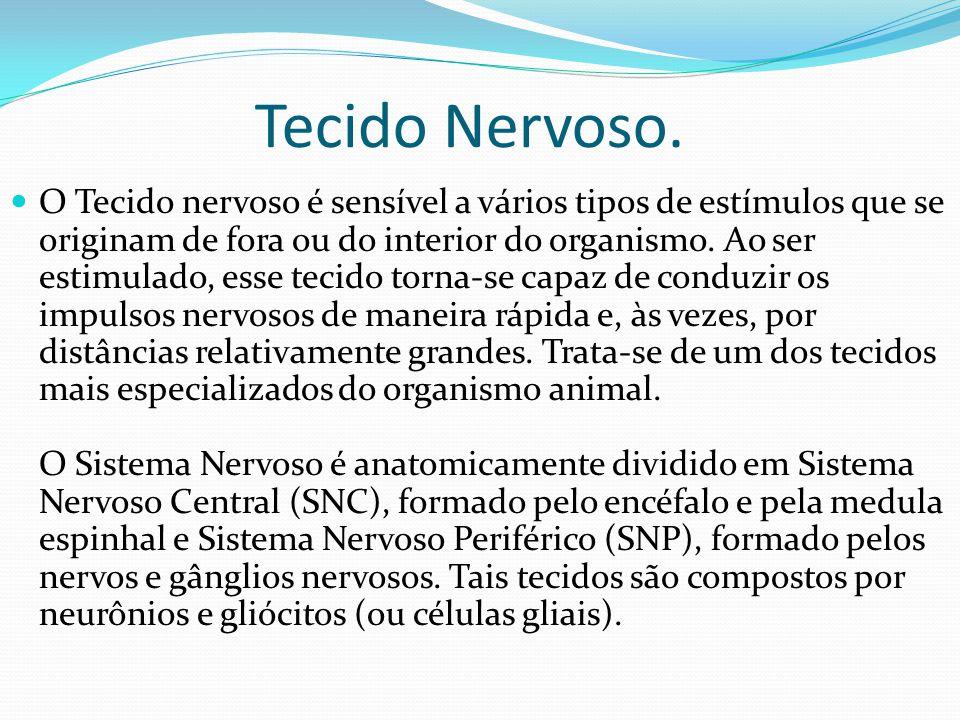 Tecido Nervoso. O Tecido nervoso é sensível a vários tipos de estímulos que se originam de fora ou do interior do organismo. Ao ser estimulado, esse t