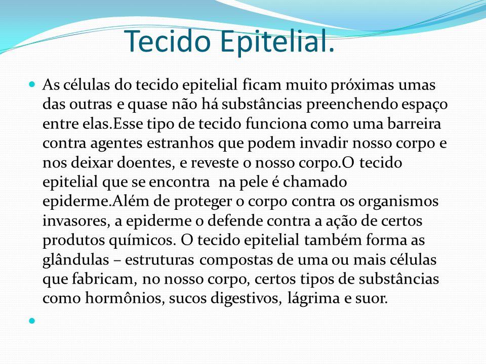 Tecido Epitelial. As células do tecido epitelial ficam muito próximas umas das outras e quase não há substâncias preenchendo espaço entre elas.Esse ti