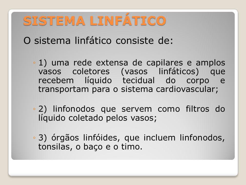 SISTEMA LINFÁTICO O sistema linfático consiste de: 1) uma rede extensa de capilares e amplos vasos coletores (vasos linfáticos) que recebem líquido tecidual do corpo e transportam para o sistema cardiovascular; 2) linfonodos que servem como filtros do líquido coletado pelos vasos; 3) órgãos linfóides, que incluem linfonodos, tonsilas, o baço e o timo.