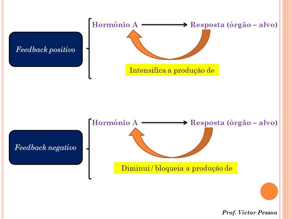 Hormônio AResposta (órgão – alvo) Intensifica a produção de Hormônio AResposta (órgão – alvo) Diminui / bloqueia a produção de Feedback positivo Feedback negativo