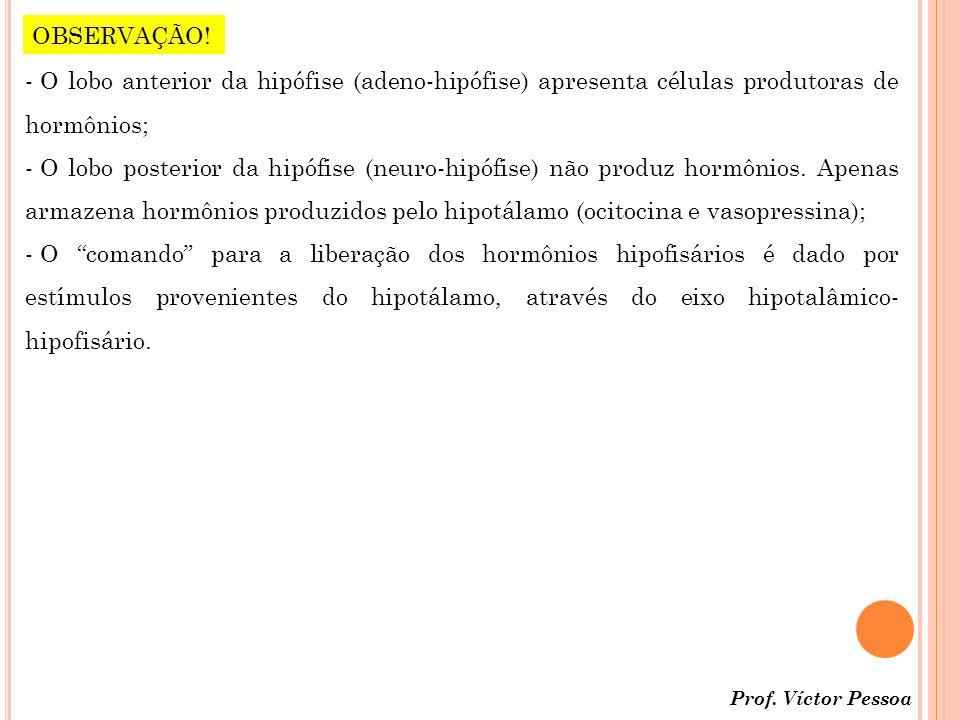 Prof.Víctor Pessoa OBSERVAÇÃO.