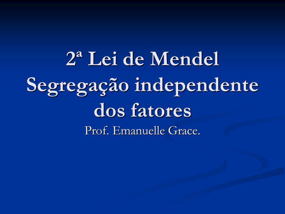 2ª Lei de Mendel Segregação independente dos fatores Prof. Emanuelle Grace.