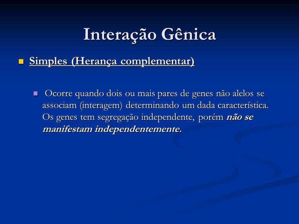 Interação Gênica Simples (Herança complementar) Simples (Herança complementar) Ocorre quando dois ou mais pares de genes não alelos se associam (inter