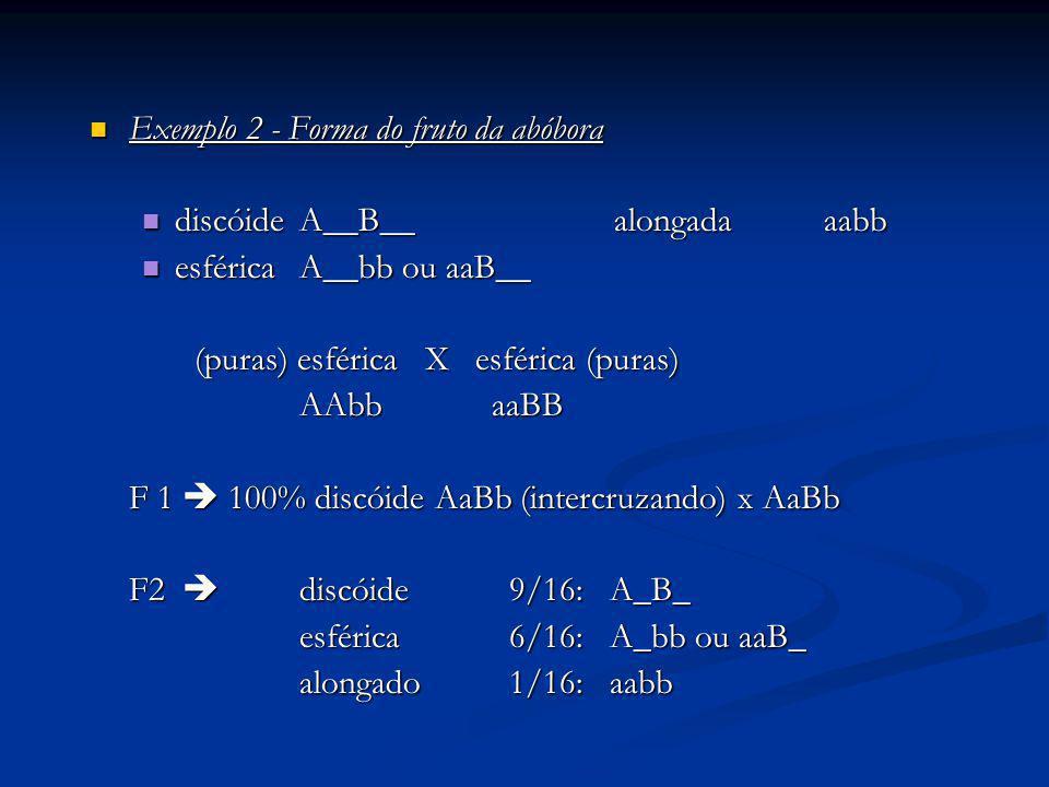 Exemplo 2 - Forma do fruto da abóbora Exemplo 2 - Forma do fruto da abóbora discóideA__B__alongadaaabb discóideA__B__alongadaaabb esférica A__bb ou aa