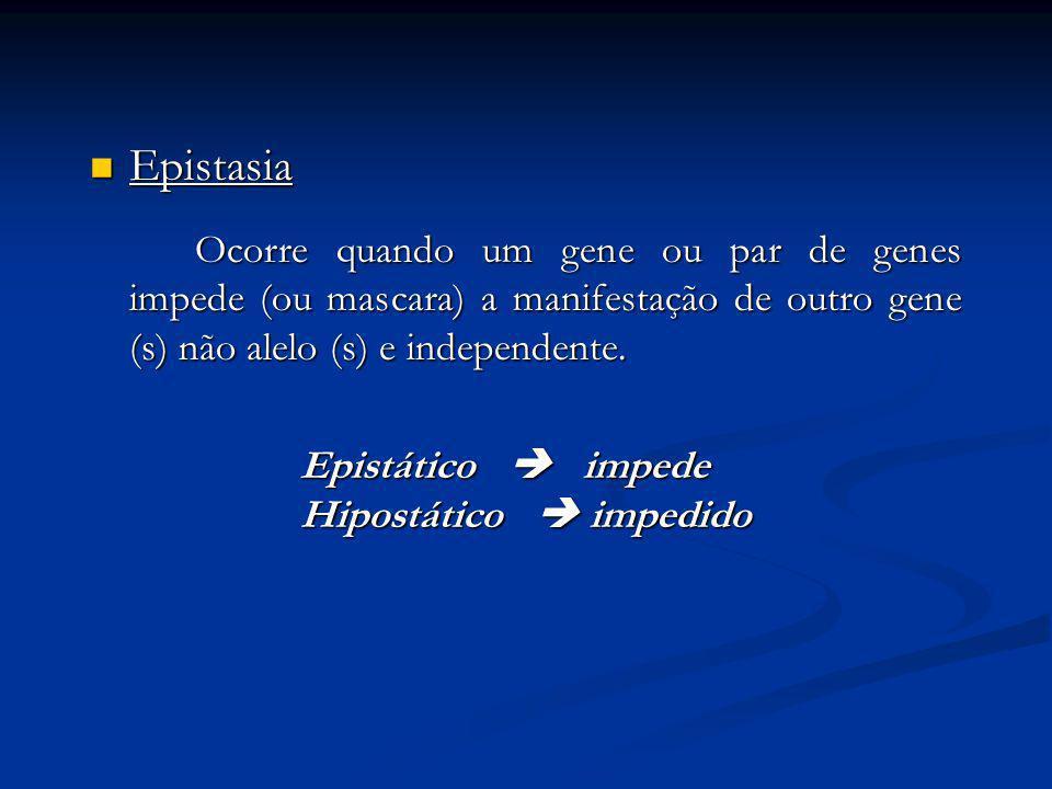 Epistasia Epistasia Ocorre quando um gene ou par de genes impede (ou mascara) a manifestação de outro gene (s) não alelo (s) e independente. Epistátic