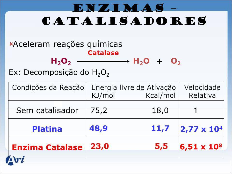 ENZIMAS – CATALISADORES Aceleram reações químicas Ex: Decomposição do H 2 O 2 Condições da ReaçãoEnergia livre de Ativação KJ/mol Kcal/mol Velocidade