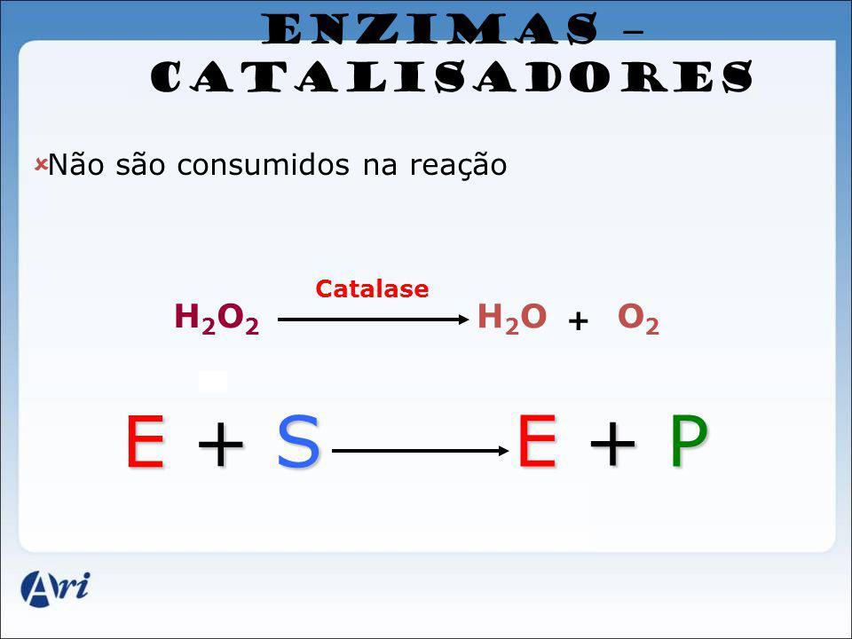 ENZIMAS – CATALISADORES Não são consumidos na reação H2O2H2O2 H2OH2O O2O2 + Catalase E + S E + PE + PE + PE + P
