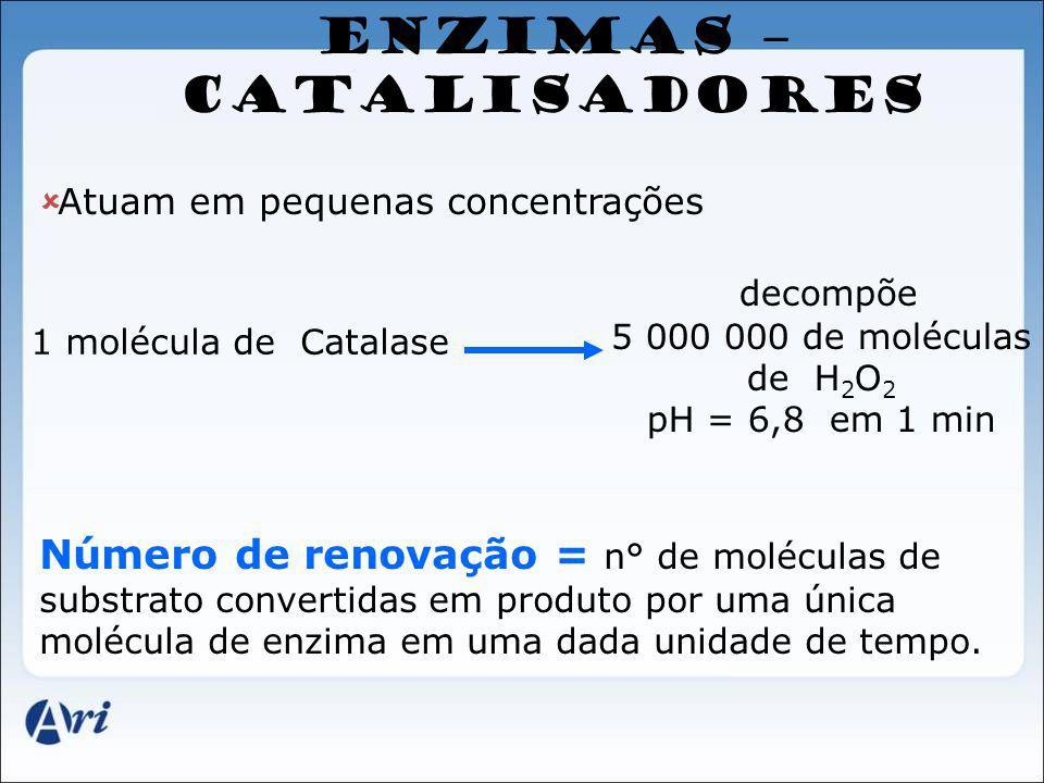 ENZIMAS – CATALISADORES Atuam em pequenas concentrações 1 molécula de Catalase decompõe 5 000 000 de moléculas de H 2 O 2 pH = 6,8 em 1 min Número de