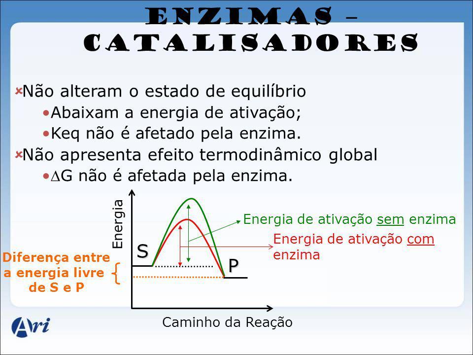 ENZIMAS – CATALISADORES Não alteram o estado de equilíbrio Abaixam a energia de ativação; Keq não é afetado pela enzima. Não apresenta efeito termodin