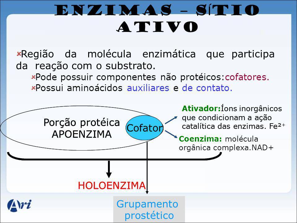 ENZIMAS – S Í TIO ATIVO Região da molécula enzimática que participa da reação com o substrato. Pode possuir componentes não protéicos:cofatores. Possu