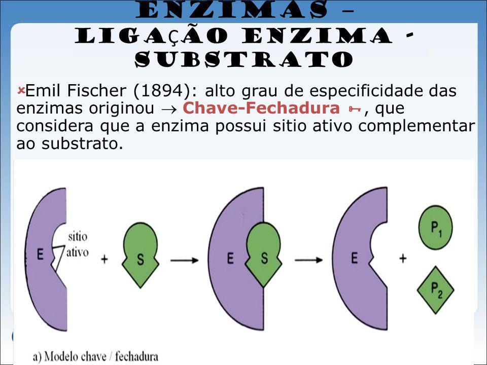 ENZIMAS – LIGA Ç ÃO ENZIMA - SUBSTRATO Emil Fischer (1894): alto grau de especificidade das enzimas originou Chave-Fechadura, que considera que a enzi