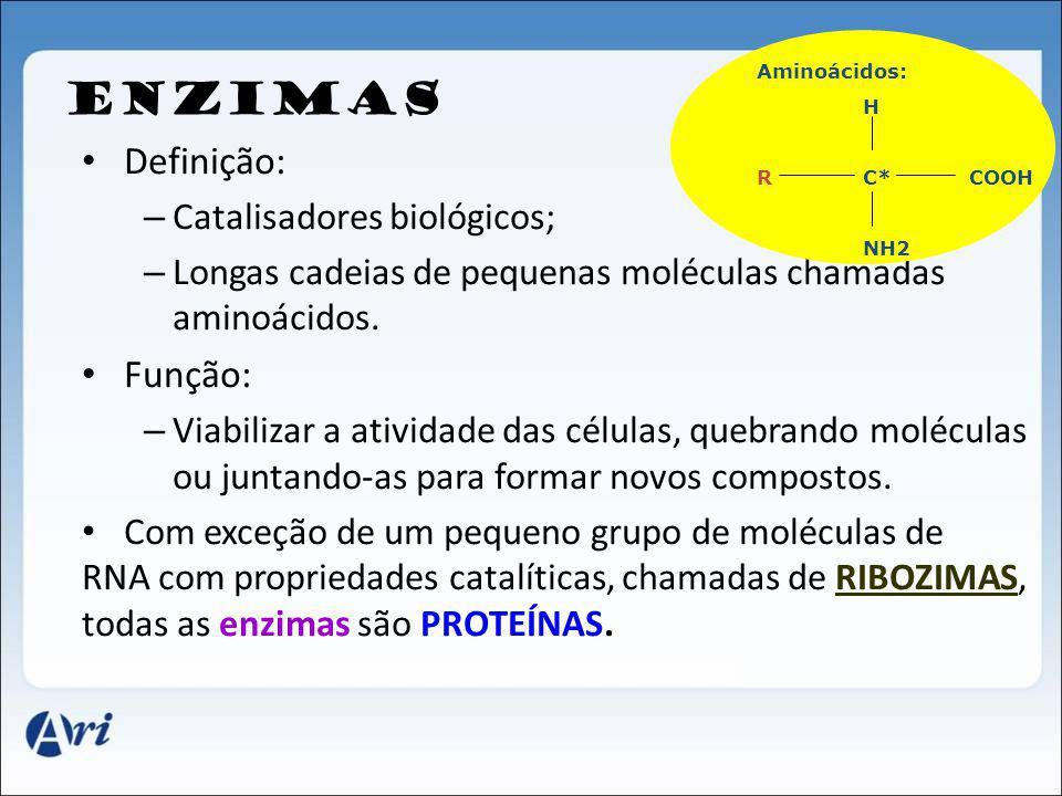 ENZIMAS Definição: – Catalisadores biológicos; – Longas cadeias de pequenas moléculas chamadas aminoácidos. Função: – Viabilizar a atividade das célul
