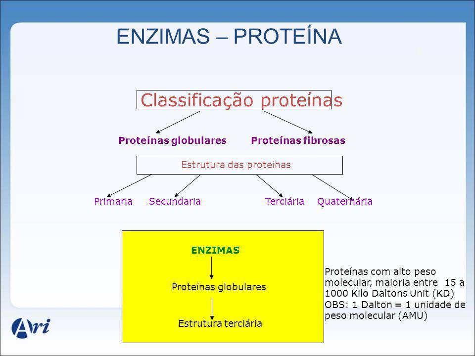 Classificação proteínas Proteínas globulares Proteínas fibrosas Estrutura das proteínas Primaria Secundaria Terciária Quaternária ENZIMAS Proteínas gl