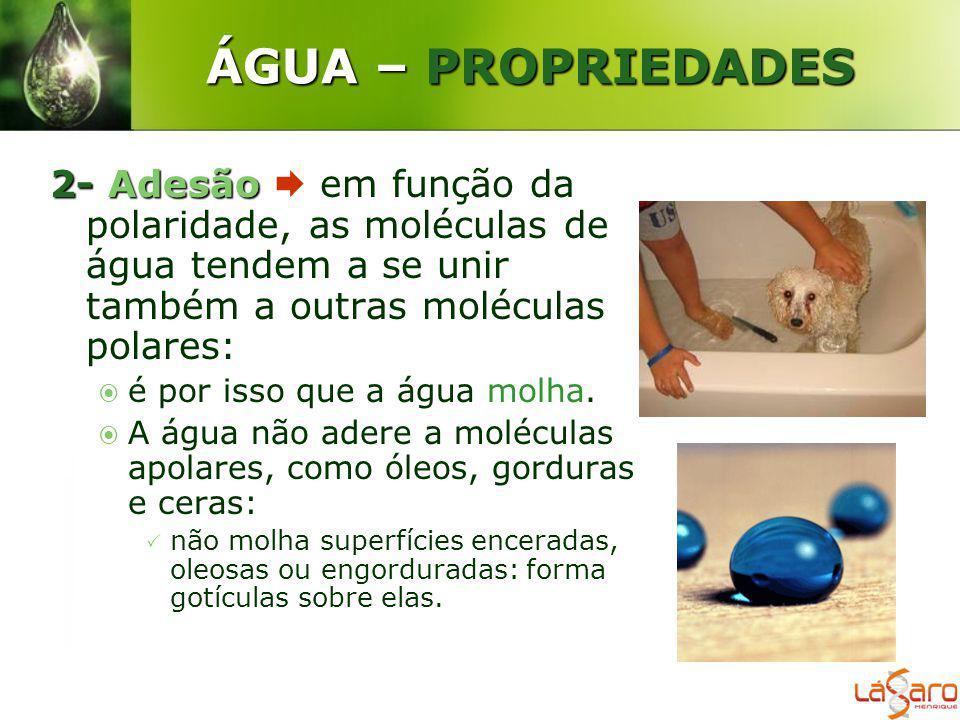 ÁGUA – PROPRIEDADES 2-Adesão 2- Adesão em função da polaridade, as moléculas de água tendem a se unir também a outras moléculas polares: é por isso qu