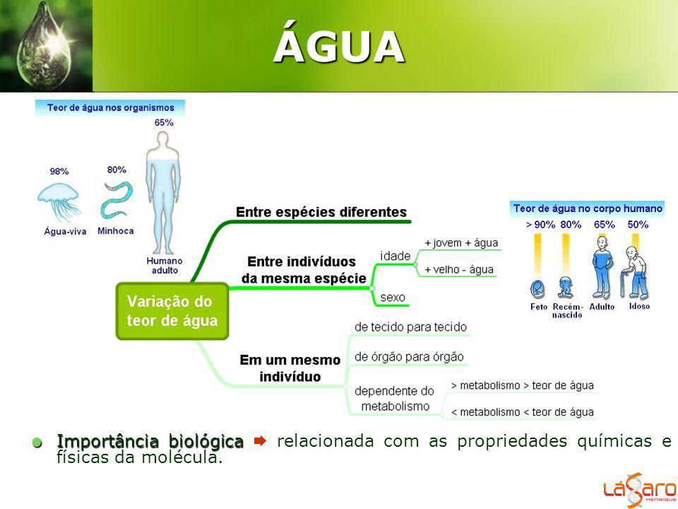 ÁGUA Importância biológica Importância biológica relacionada com as propriedades químicas e físicas da molécula.